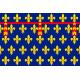 Drapeau Artois