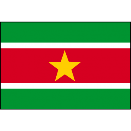 Drapeau Surinam